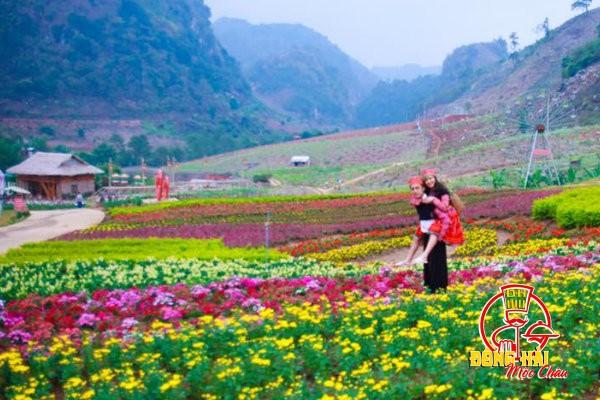 Danh sách điểm thăm quan tại Mộc Châu